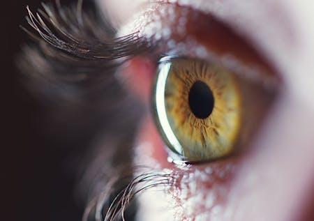 Maximized Eye Health = Optimal Surgical Outcomes image