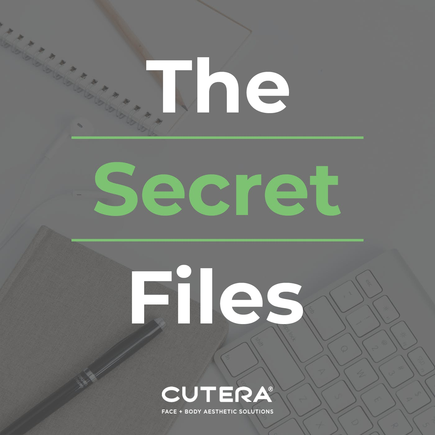 The Secret Files Image